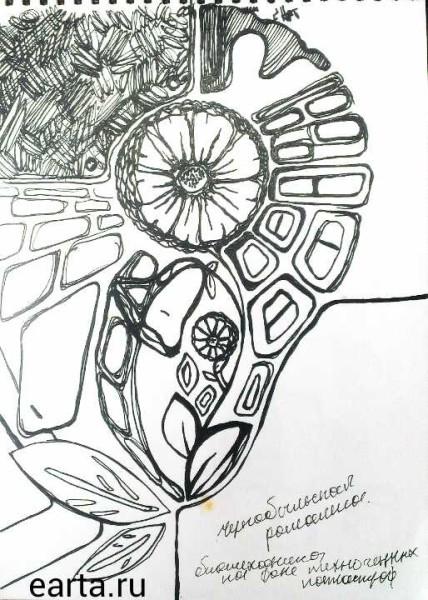 EARTA.ru Картины Наброски Зарисовки 1400063929430-428x600 Фантазия с чернобыльской ромашкой рисунок+видео Uncategorized