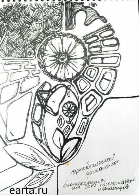 фантазия с чернобыльской ромашкой
