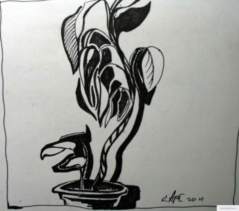 Цветок в горшке рисунок/фото