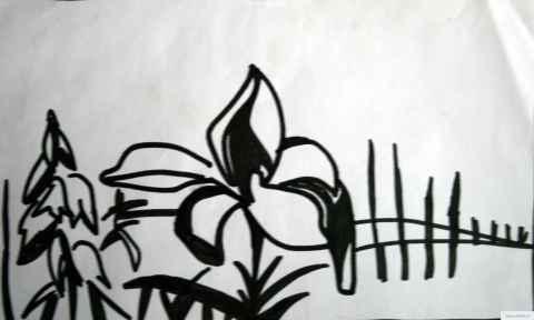 цветок рисунок/фото